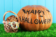 Halloween pumpkin on grass on blue background