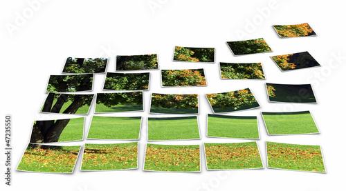 FotoCollage - Baum im Herbst