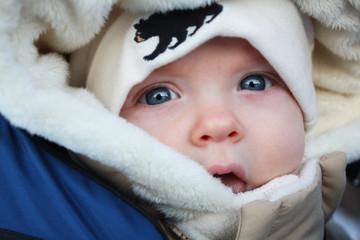 Close Up On A Winter Walk II