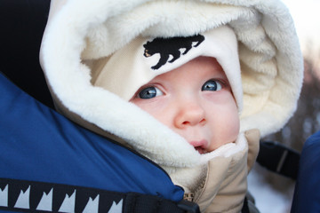 Close Up On A Winter Walk
