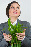 Adult pretty businesswoman taking care about her plant. Startup