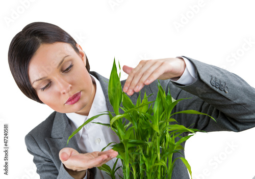 Adult business woman taking care about her plant. Safety and con
