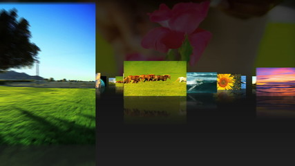 Montage Scenes of Childhood and Nature