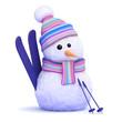 Snowman with ski's