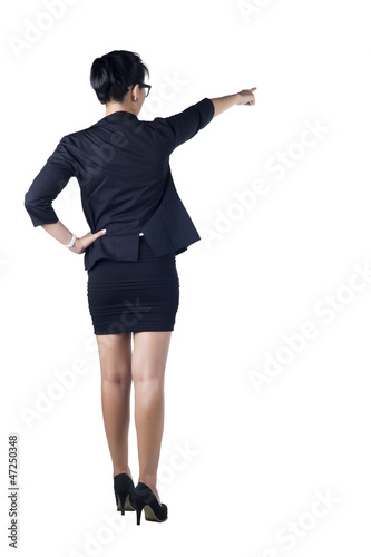 Rear / Back view of business woman standing and pointing.