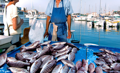 France. Marseille. Fish Market. Yachts.