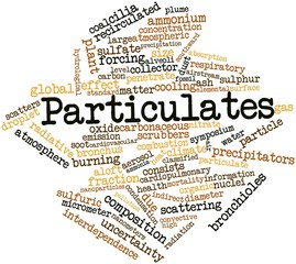 Word cloud for Particulates
