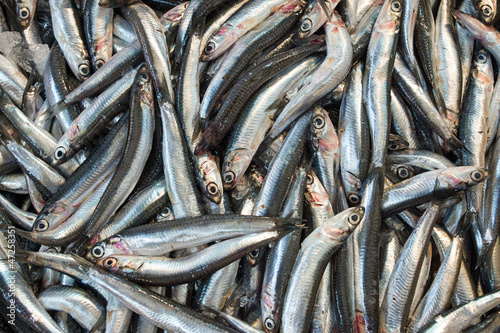 Anchovies on the fish market
