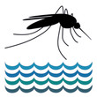 Mosquito, standing water, graphic illustration, white background