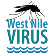 West Nile Virus, mosquito, standing water, graphic illustration