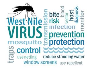 West Nile Virus Word Cloud, mosquito, standing water, white bg