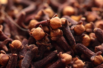 Macro of spice cloves