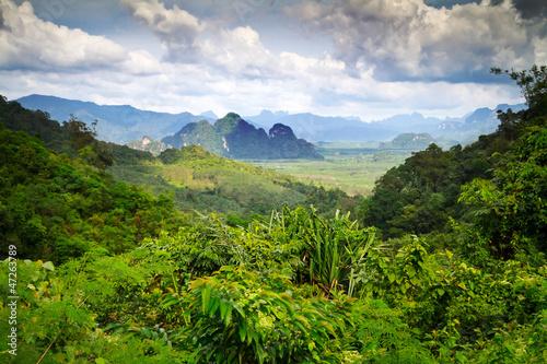tropikalny-las-deszczowy-w-stylu-orientalnym