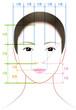 女性の顔の比率
