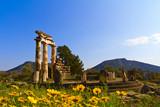 Delphi,Greece - 47264559