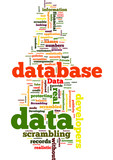 Data Scrambling  Developing Databases without Compromising Priva poster