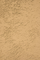 texture of bark beetle plaster on the wall