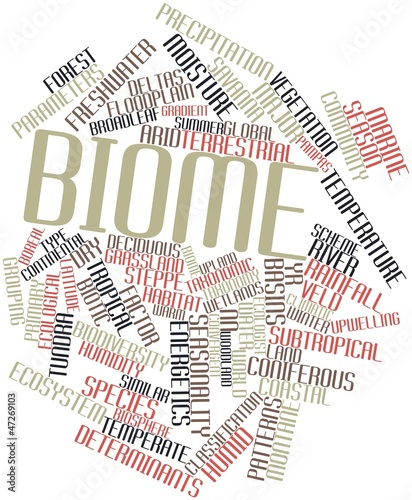 Word cloud for Biome