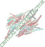 Word cloud for Critical success factor poster