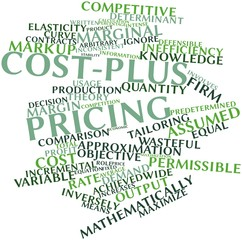 Word cloud for Cost-plus pricing