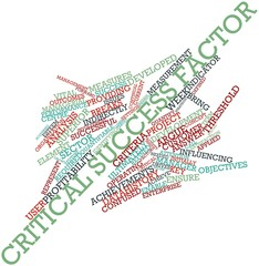 Word cloud for Critical success factor