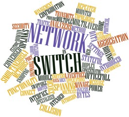 Word cloud for Network switch