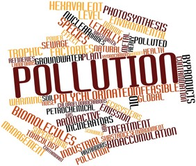Word cloud for Pollution