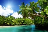lake and palms, Mahe island, Seychelles