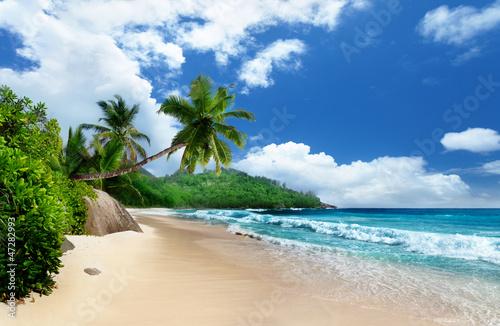 Fototapeten,bellen,strand,schön,blau