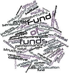 Word cloud for Fund of funds