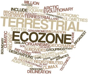 Word cloud for Terrestrial ecozone