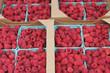 Raspberry Pints in Cardboard Flats