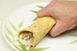 Hand Holding a Burrito