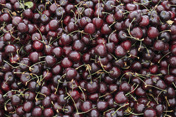 Dark Red Cherries in a Market Display