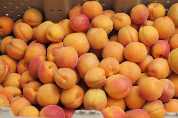 Peaches in a Market Bin