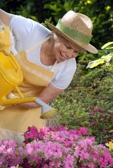 Señora trabajando un jardín,cuidando flores,bañando plantas.