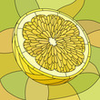 Vector illustration of yellow lemon.