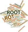 Word cloud for Root rot