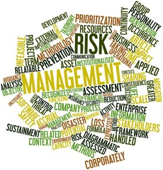 Word cloud for Risk management