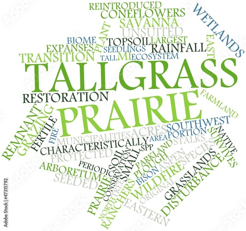 Word cloud for Tallgrass prairie