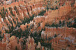 Great spires carved away by erosion in Bryce Canyon National Par