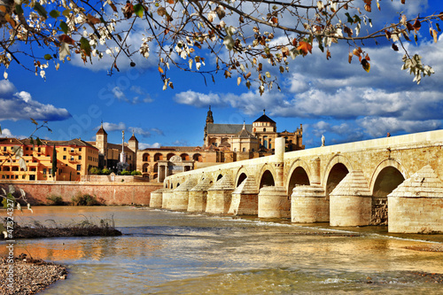 Cordoba, Spain . view with mosque and bridge