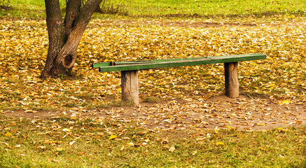old bench. autumn