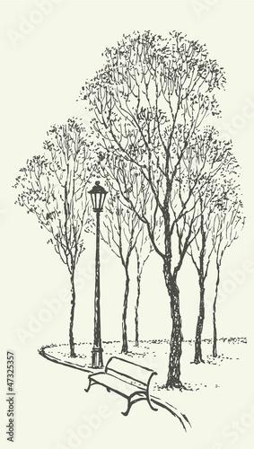 Panel Szklany Vector landscape. Park bench near the lantern under trees