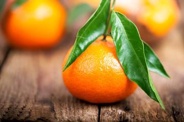 vitaminreiche orange Mandarinen mit Blättern