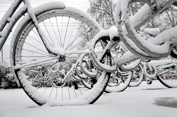 Bikes in rack in winter