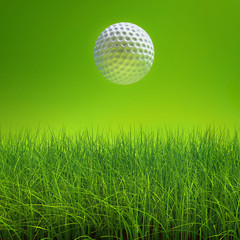 golf ball on lawn over green
