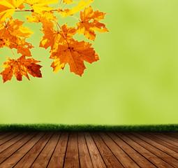 Fresh Autumn Background