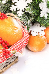 christmas composition with oranges and fir tree