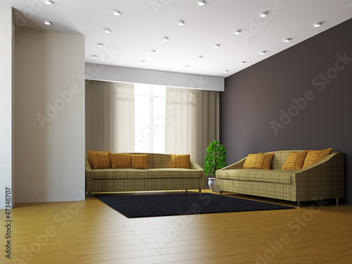 Livingroom with sofas and a plant